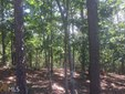 Land Lot - Dahlonega, GA (photo 1)