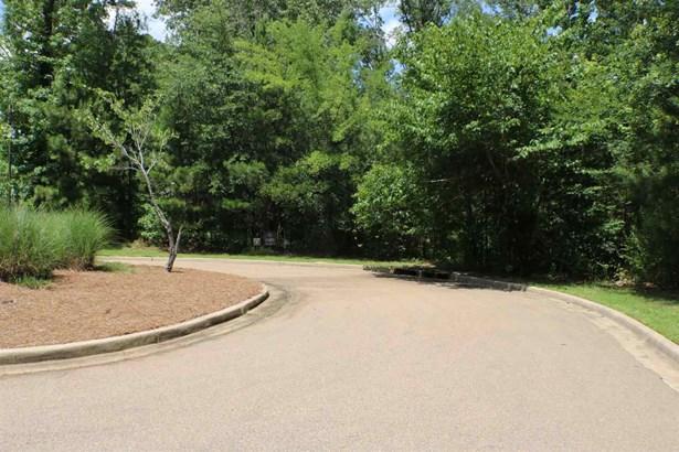 Residential - Ridgeland, MS (photo 5)