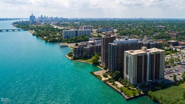 Condominium, Ranch - Detroit, MI (photo 3)