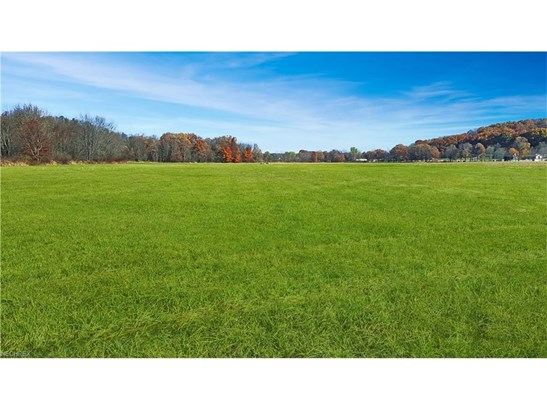 24608 Sandy Creek Rd, Minerva, OH - USA (photo 1)