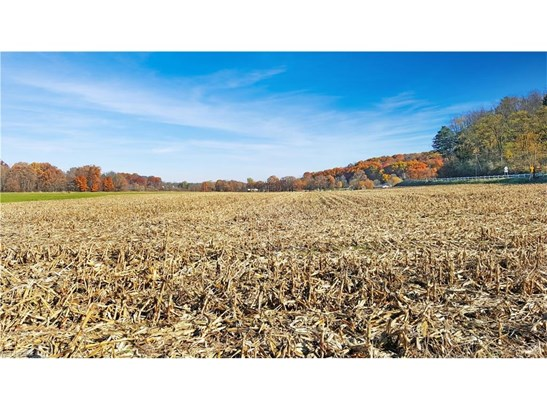 24608 Sandy Creek Rd, Minerva, OH - USA (photo 4)