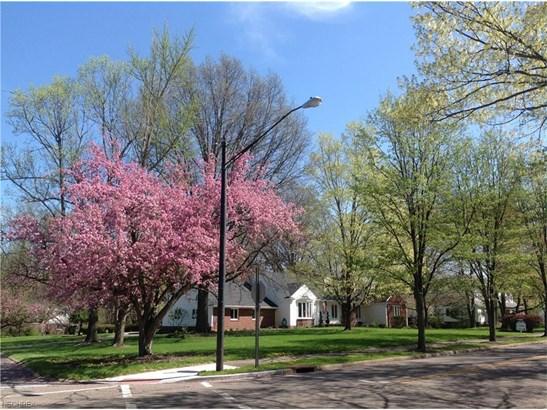 1175 Glamorgan St, Alliance, OH - USA (photo 3)