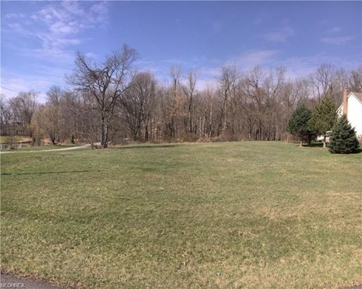 10710 Wolf Ave Northeast, Hartville, OH - USA (photo 5)