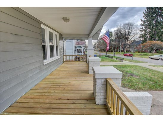 327 Storer Ave, Akron, OH - USA (photo 4)