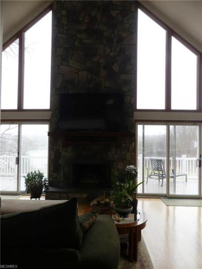 291 West Mohawk Dr, Malvern, OH - USA (photo 4)