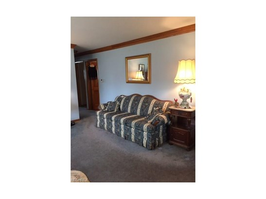 239 East Ralston Ave, Akron, OH - USA (photo 3)