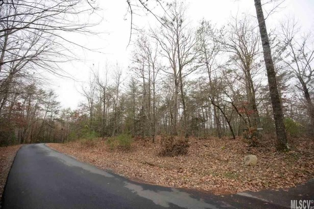 Residential - Connelly Springs, NC (photo 2)