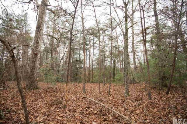 Residential - Connelly Springs, NC (photo 5)
