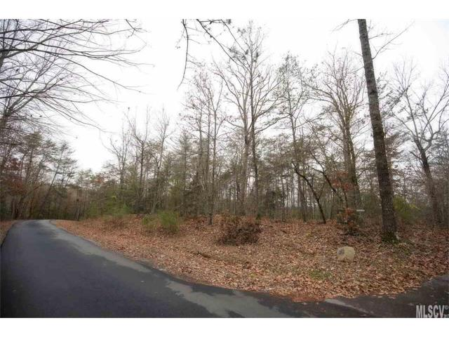 Acreage - Connelly Springs, NC (photo 5)