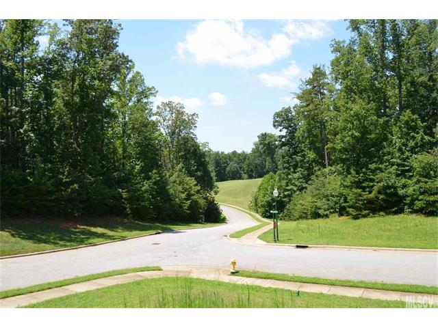 Acreage - Conover, NC (photo 1)