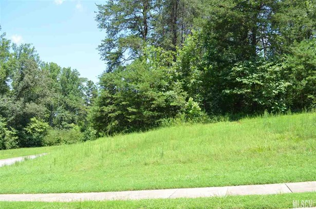 Residential - Conover, NC (photo 4)