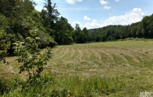 Acreage - Lenoir, NC (photo 1)