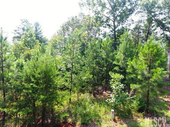 Residential - Granite Falls, NC (photo 4)
