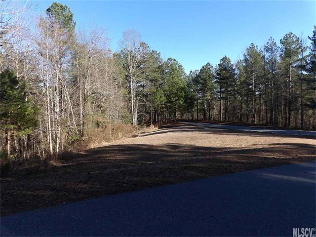 Acreage - Connelly Springs, NC (photo 2)