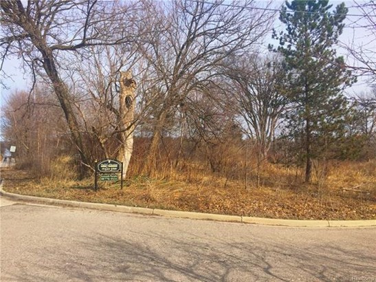 Vacant Land - Milford, MI (photo 1)
