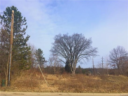 Vacant Land - Milford, MI (photo 3)