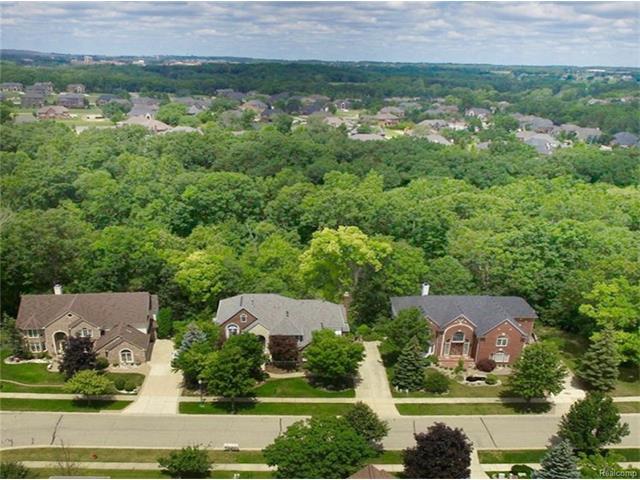 Colonial - Rochester Hills, MI (photo 2)