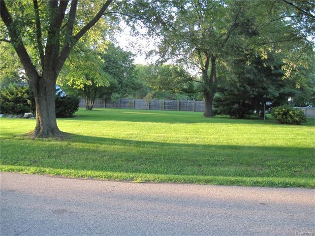Vacant Land - Rochester Hills, MI (photo 3)