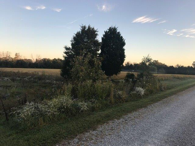 Single Family Lot - Franklin Twp, OH (photo 3)