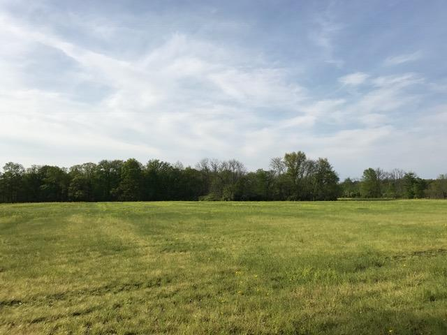 Acreage - Harlan Twp, OH (photo 1)