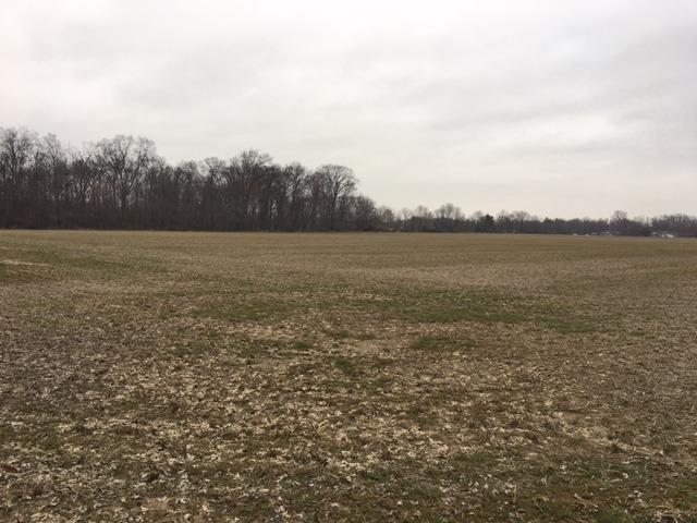 Acreage - Harlan Twp, OH (photo 1)
