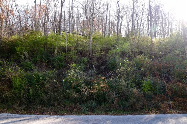 Single Family Lot - Milford, OH (photo 3)