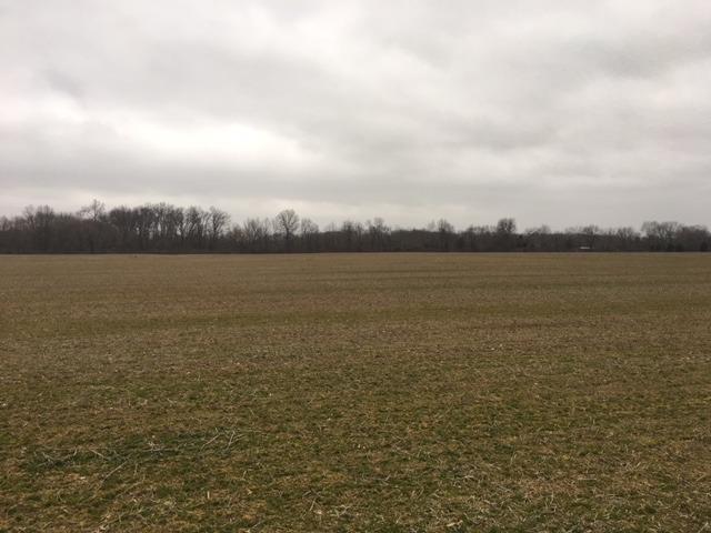 Acreage - Harlan Twp, OH (photo 3)
