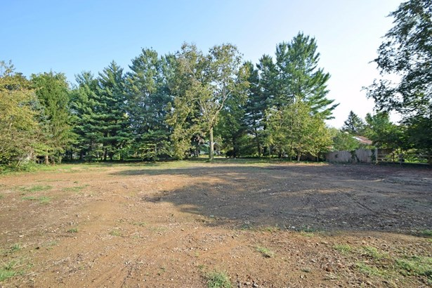 Single Family Lot - Terrace Park, OH (photo 5)