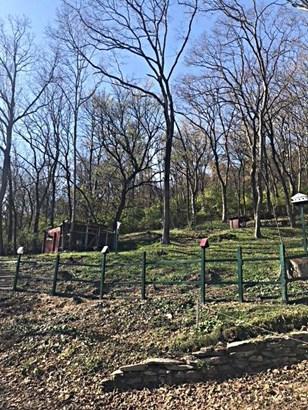 Single Family Lot - Cincinnati, OH (photo 4)
