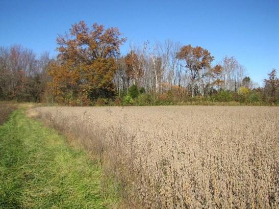 Acreage - Williamsburg Twp, OH (photo 2)