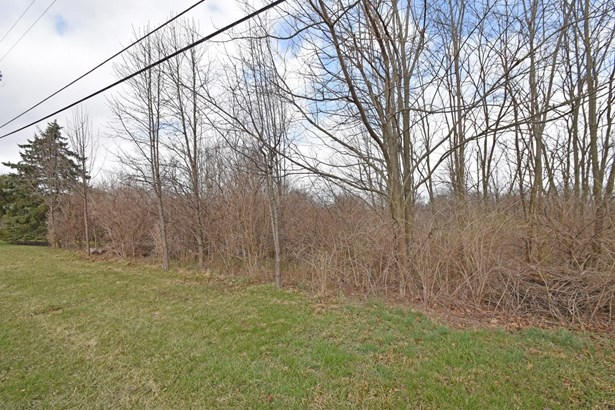 Acreage - Colerain Twp, OH (photo 4)
