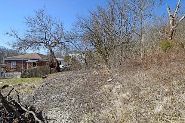 Single Family Lot - Cincinnati, OH (photo 3)