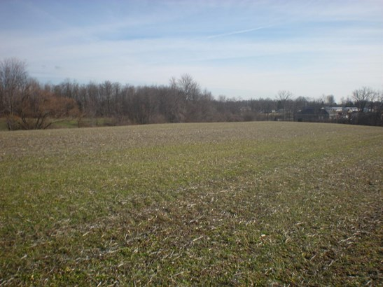 Acreage - West Harrison, IN (photo 5)