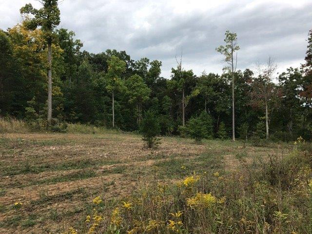 Acreage - Franklin Twp, OH (photo 3)