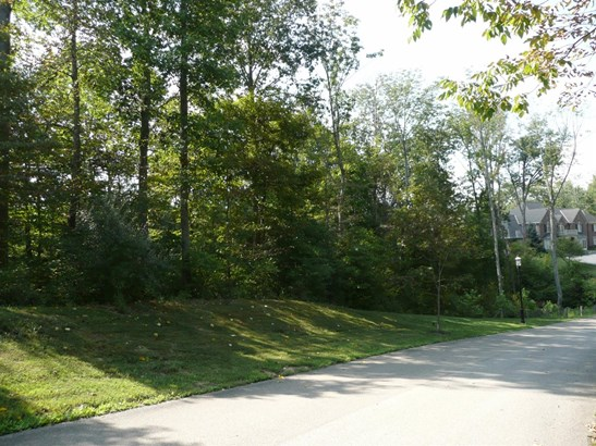 Single Family Residence, Ranch - Pierce Twp, OH (photo 4)