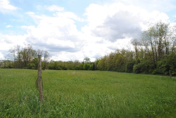 Single Family Lot - Gratis Twp, OH (photo 4)
