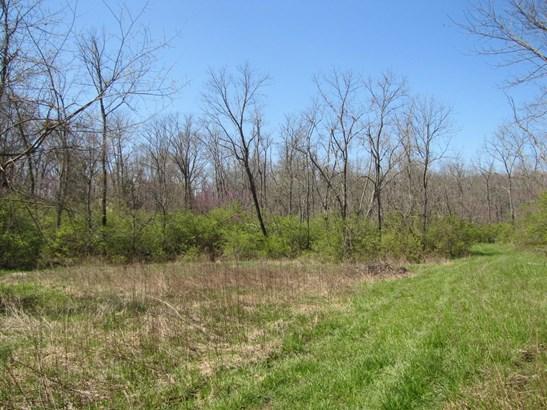 Acreage - Goshen Twp, OH (photo 4)