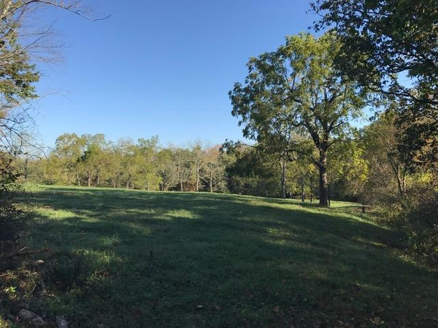 Acreage - Harlan Twp, OH (photo 5)