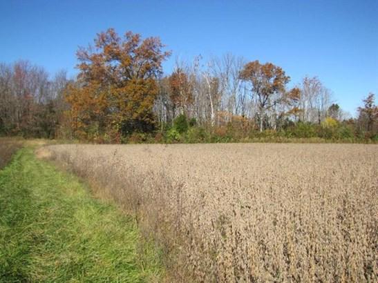 Acreage - Williamsburg Twp, OH (photo 4)