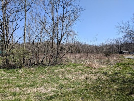 Single Family Lot - Franklin Twp, OH (photo 1)