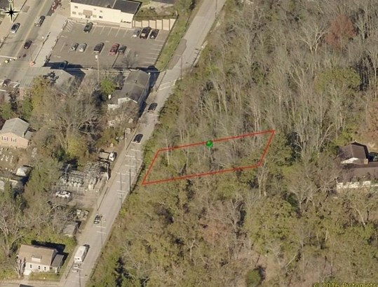 Single Family Lot - Milford, OH (photo 2)