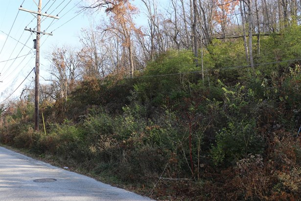 Single Family Lot - Milford, OH (photo 4)