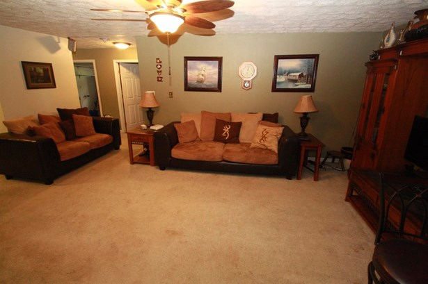 Single Family Residence, Ranch - Aurora, IN (photo 4)