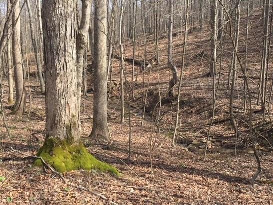 Acreage - Camp Creek Twp, OH (photo 3)