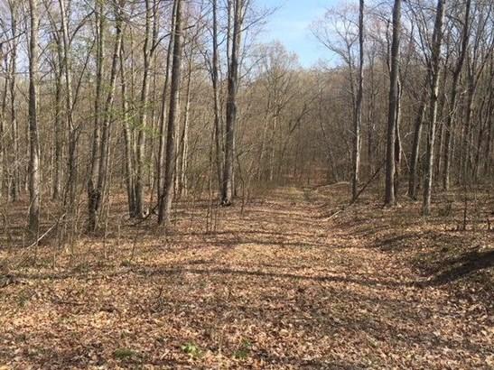Acreage - Camp Creek Twp, OH (photo 4)