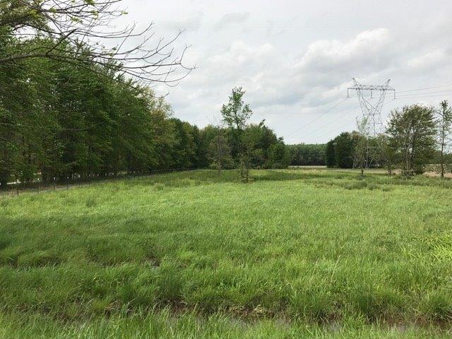 Acreage - Harlan Twp, OH (photo 2)
