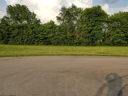 Commercial Lot - West Harrison, IN (photo 5)