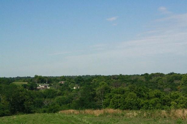 Acreage - Harrison Twp, OH (photo 3)