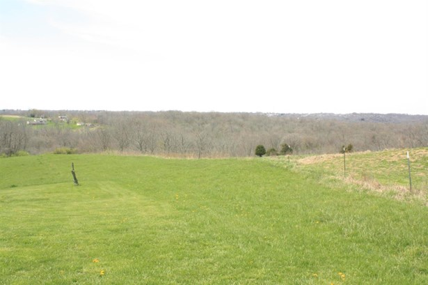 Acreage - Harrison Twp, OH (photo 4)