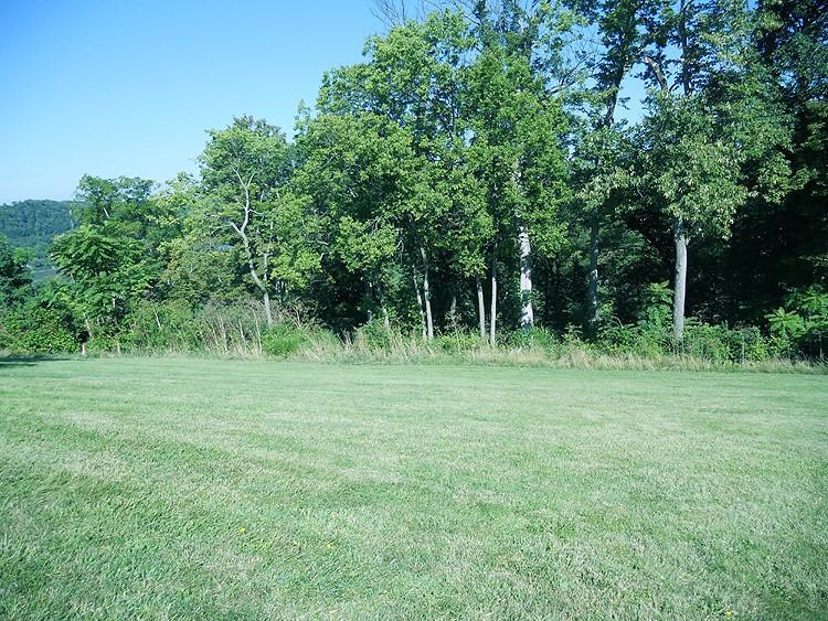 Single Family Lot - Delhi Twp, OH (photo 4)